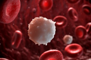 Scientists Have Discovered Ways To Kill Leukemia Cells With Another Leukemia Cell