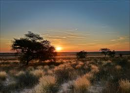 Fracking Rights Sold Out in a National Park in Botswana