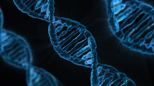How genetic engineering can affect the world economy