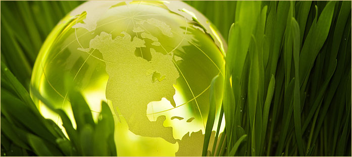 Smaller companies are showing the way on how to be more environmental friendly.