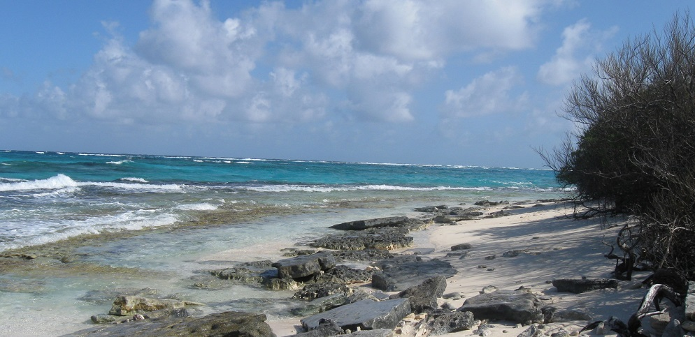 Paris Agreement could determine the fate of the Caribbean Islands