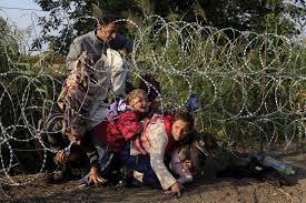 EU needs a unified European migration policy:  Angela Merkel