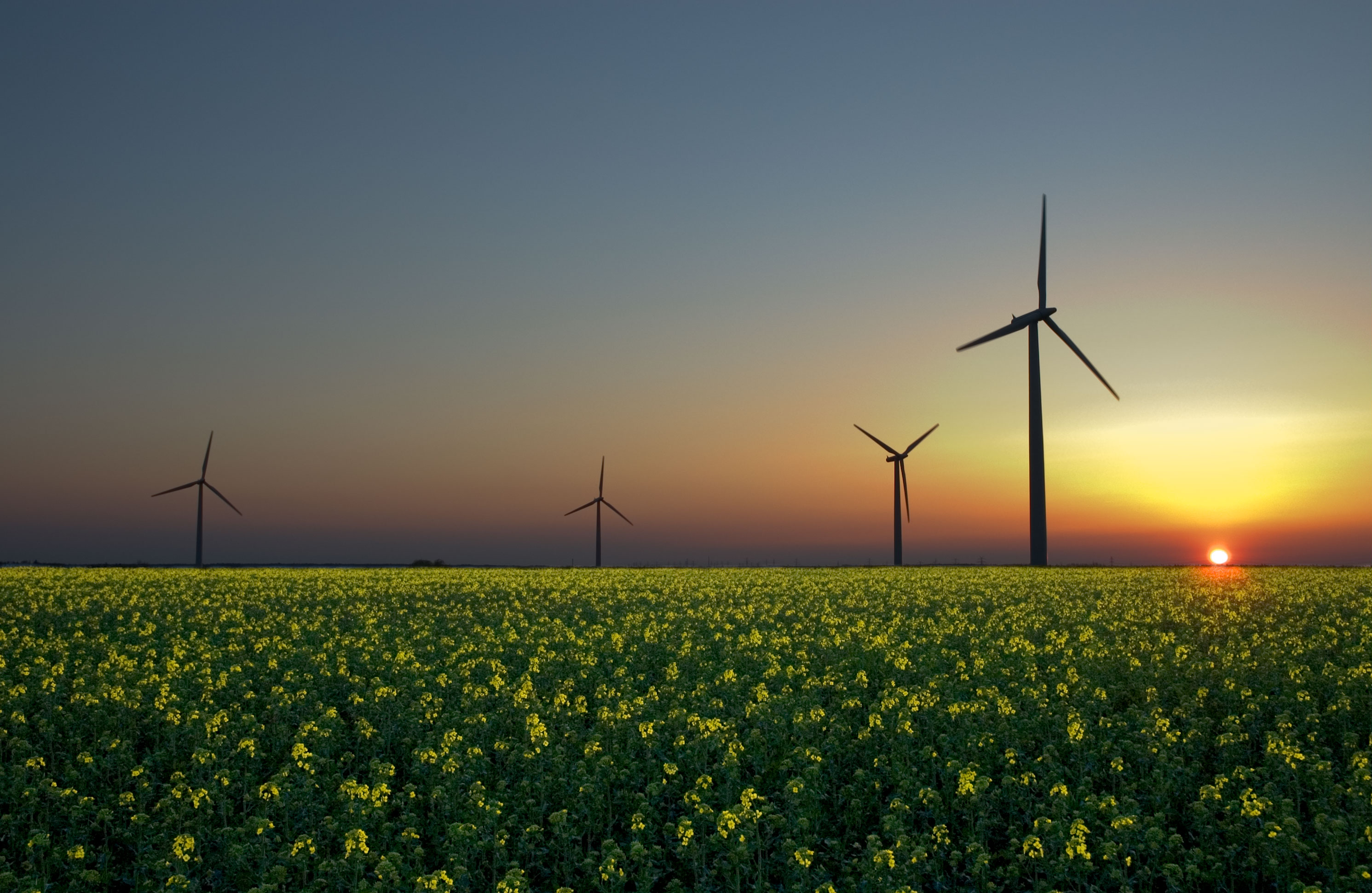 Nine EU Countries Leading in the Field of Renewable Energy