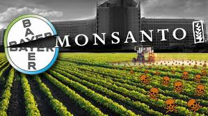 Monsanto Found Liable For Sickness  Of Farmer In A Court In France