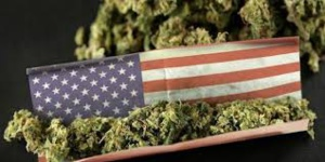 US Cannabis Market Would Reach $41 Billion By 2028 If Legalised Country-Wide: Barclays