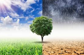 Insurers Call On World Governments To Earnestly Tackle Climate Change