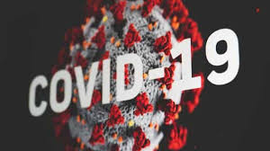 WHO Team In China Dismiss Covid-19 'Lab Leak' Theory