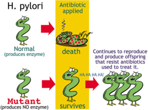 New research sheds light on bacterial resistance to antibiotics. Monsanto's response - the ostrich act.
