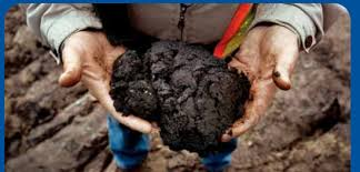 Export of Tar Sands to Europe to Rise Alarmingly: Reports