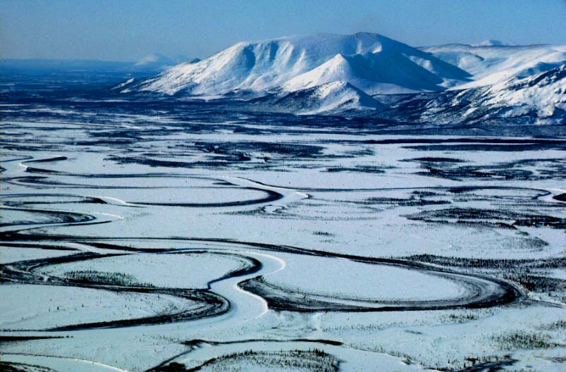Trump draws a bead on oil in the Arctic Refuge