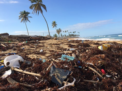In A Lifetime We Could Accumulate 20Kg Micro-Plastic In Our Body