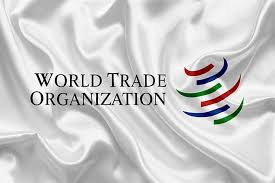 EU Trade Commissioner Hogan Could Put Himself Up As Candidate Of WTO Chief