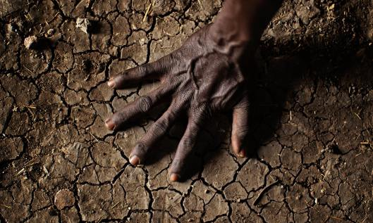 65% of Africa arable land is damaged and of poor quality