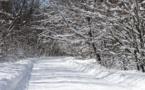 Wacky Weather Causes 'Split In The Polar Vortex'