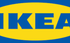 Furniture Giant Ikea To Serve Home Grown Lettuce At Its Restaurants