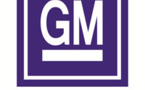 US's GM Motors Eyeing Developing With Its GEM Project