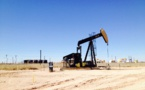 Experts assessed US senator Warren's threats to ban shale oil production