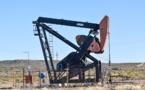 Saudi Arabia will seek to reduce production