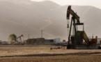 OPEC to discuss response to falling oil prices