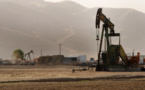 Experts warn of oil excess