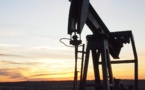US oil production goes up for the first time in 11 weeks