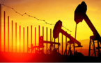 OPEC Considering For An Era Of Declining Global Oil Demand: Reports