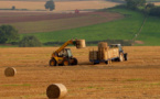 UK government to pay elderly farmers up to $140,000 for retirement
