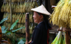 Bloomberg: TikTok boosts Chinese agriculture