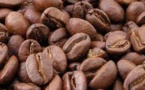 Unusual Cold Wave In Brazil Threatens Coffee, Cane And Orange Crops