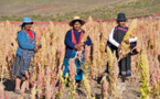 Bolivia's school meals bolsters the health of its children and its economy