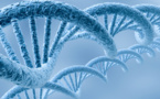 BDO's Study Claims Biotech Has Become The 'Hot' Choice For R&D Funds