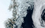 Global Sea Levels Could Rise by a Meter if Two Collapsing Glaciers in Greenland Were to Melt Completely