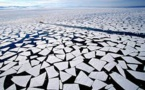 """Arctic Region """"Profoundly Affected' by Record High Temperatures in 2015"""
