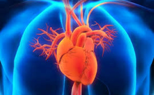 U.S. Pharma Companies Developing 200 New Medicines For Cardiovascular Diseases: PhRMA Report